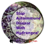 Stop Autoimmune Disease With What?!